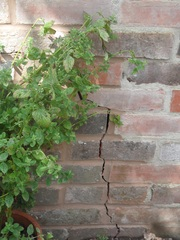 Cracked Wall 3