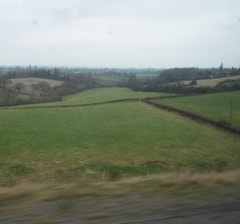 Field28